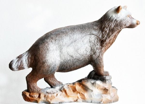 Leitold Marderhund