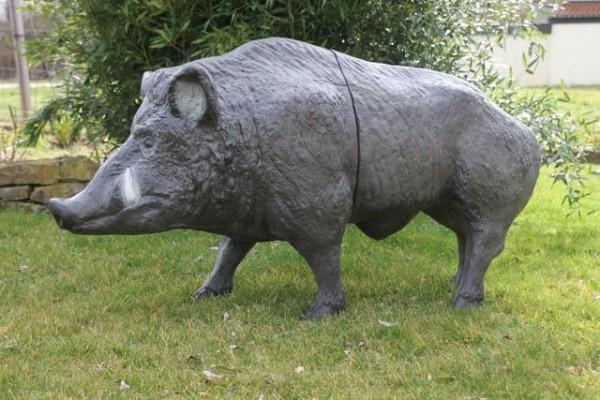 3D Tier Keiler kanadisch