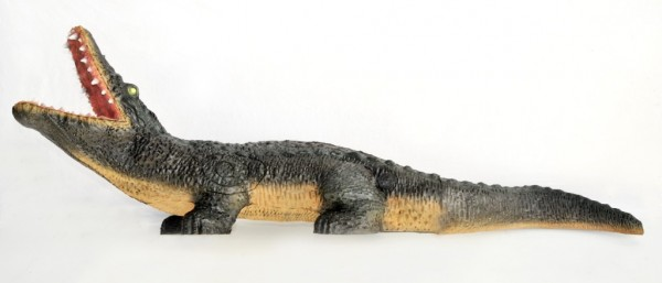 Leitold Krokodil