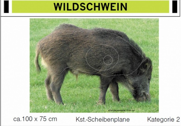 Zielscheibe Wildschwein
