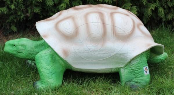 Schildkröte Eleven
