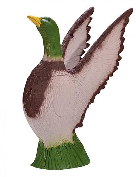 IBB große Ente abstreichend