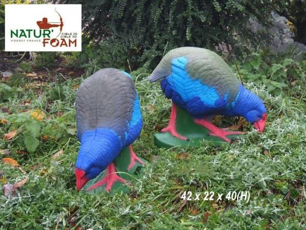 3D-Tier NaturFoam Takahe