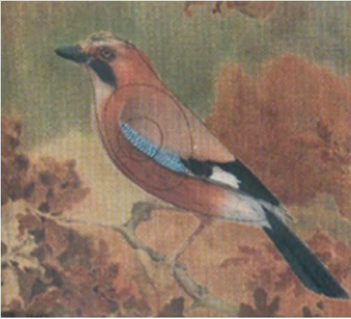 Tierbild-Scheibenauflage Eichelhäher