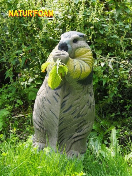 3D-Tier NaturFoam stehendes Murmeltier