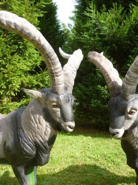 3D-Tier NaturFoam Gredos-Steinbock