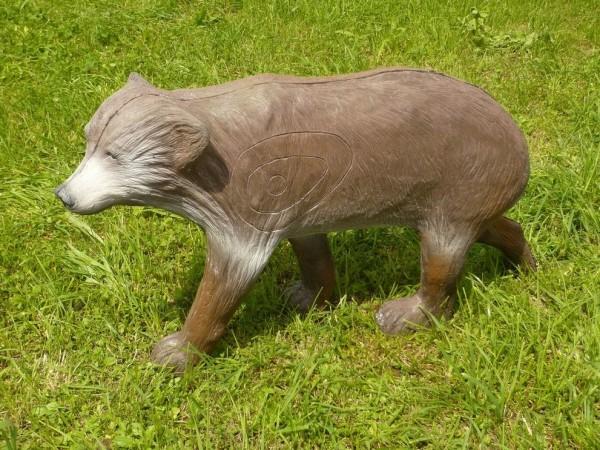Leitold kleiner laufender Braunbär