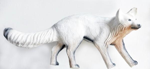 Leitold Polarfuchs laufend